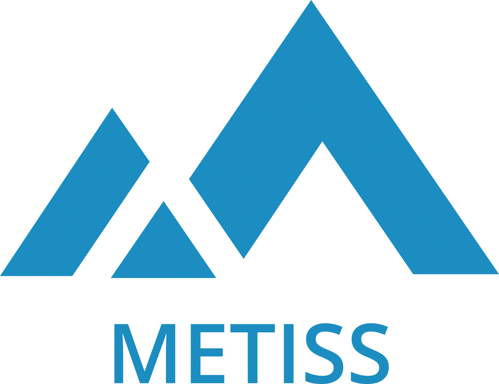 my project, metiss